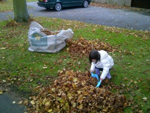 Sofia sweeping leaves 2012